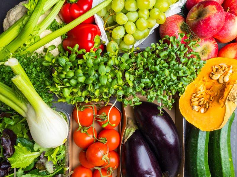 Rå grönsaker och fruktbakgrund holdingen för nya händer för mat för begreppet för morötter för bakgrundsbullegruppen isolerade de royaltyfria bilder