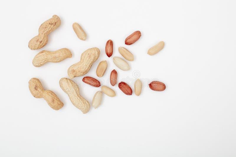 Rå jordnötter på vit bakgrund arkivfoto