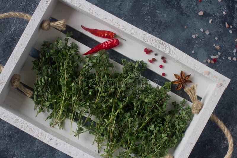 Rå organiska kryddor och örter, timjan, varma peppar, stjärnaanis och himalayan saltar royaltyfri foto