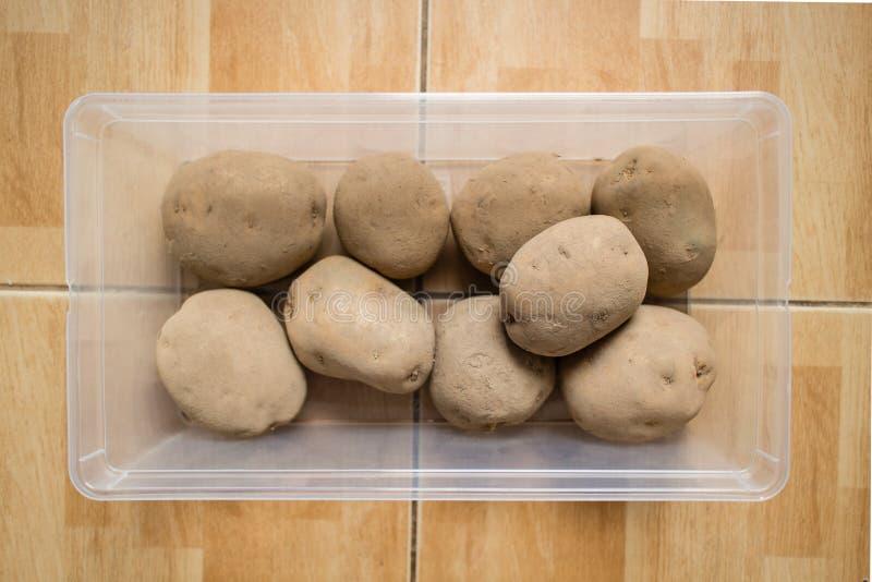 Rå potatisar i en plast- behållare på golv royaltyfria bilder