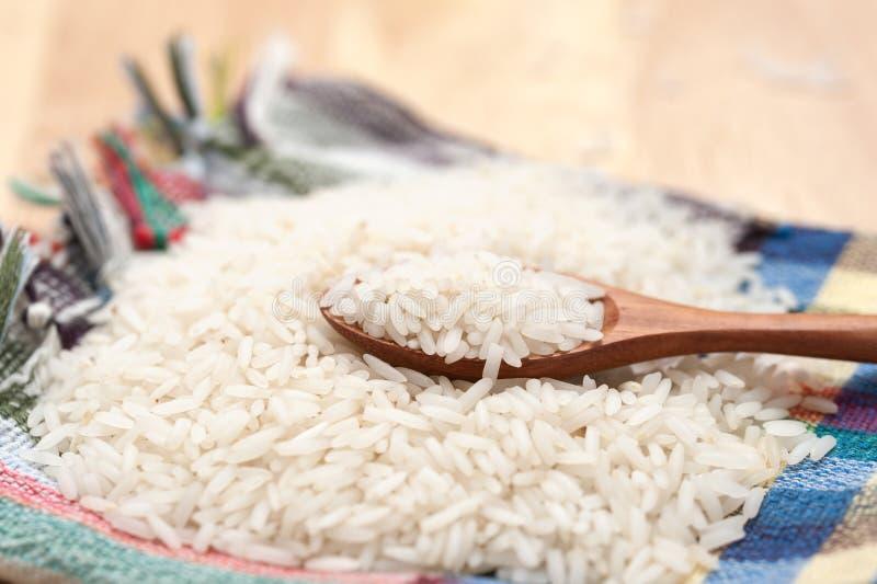 rå rice royaltyfri foto