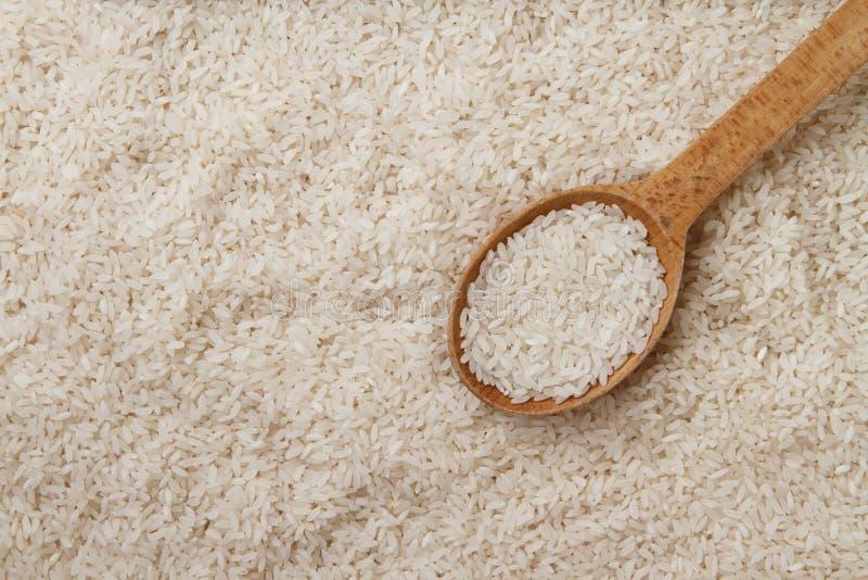 Rå ris i träsked royaltyfria bilder