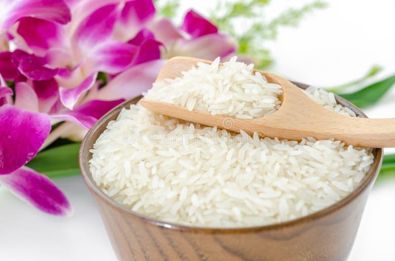 Rå risjasmin royaltyfri fotografi