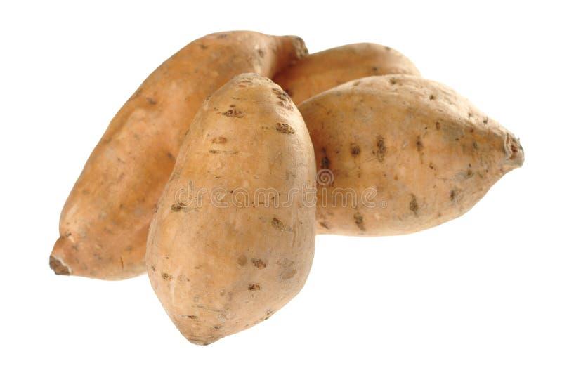 rå söt white för potatis royaltyfria foton