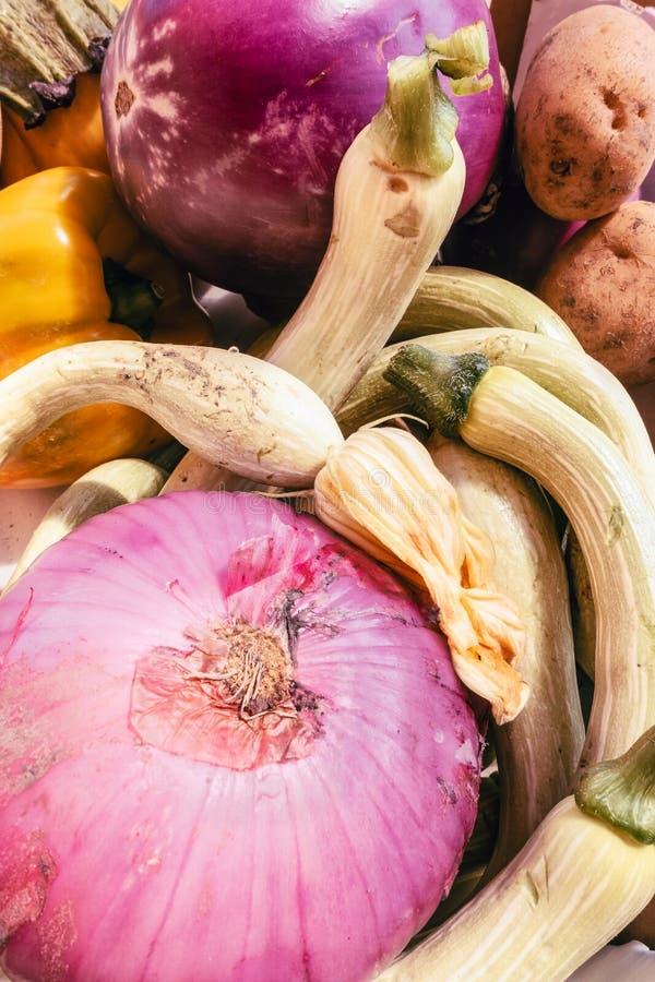 Rå sunda mogna grönsaker arkivbild