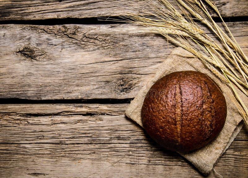 Rågbröd med öron trägrund tabell för djupfält royaltyfri fotografi