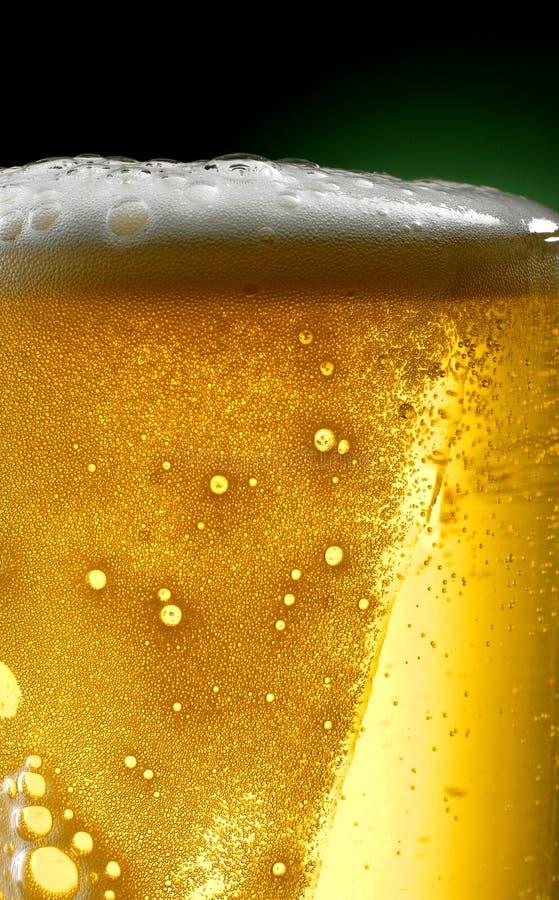 Råna av öl royaltyfria bilder