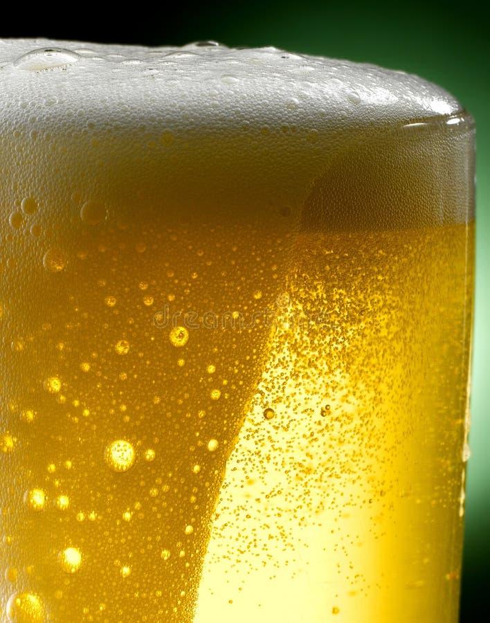 Råna av öl fotografering för bildbyråer