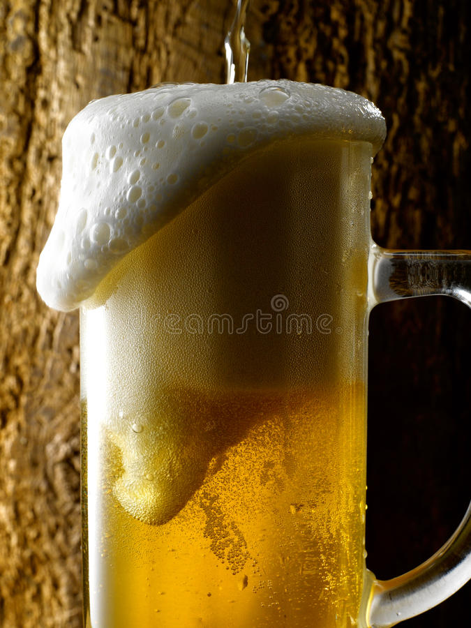 Råna av öl royaltyfri foto