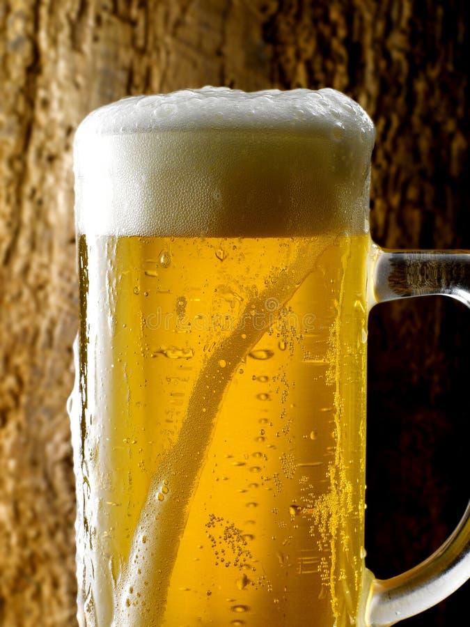 Råna av öl royaltyfri bild