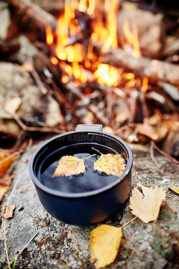 Råna av varmt te är hösten i en skog i guld- gul lövverk Hösten kom, det magiska lynnet Sväva för gulingsidor royaltyfri fotografi