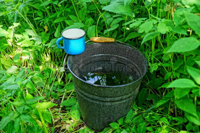 Rånar den emaljerade hinken för svart metall av vatten och en blått anseende i det gröna gräset royaltyfri foto