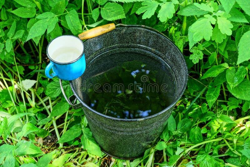 Rånar den emaljerade hinken för svart metall av vatten och en blått anseende i det gröna gräset arkivfoton