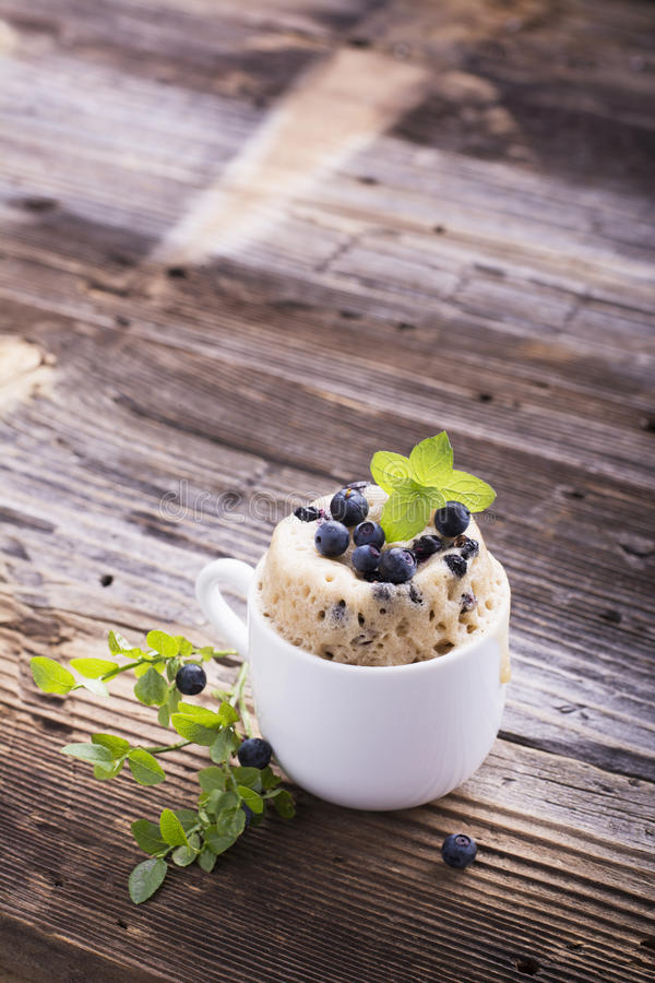 Rånar nytt hemlagat för sund frukost på kakan med skogblåbär i en vit keramisk bunkekvist av mogna bär arkivbild