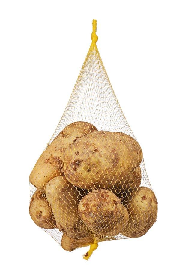 Råolja ruttna, bortskämda organiska potatisar i ingrepp hänger löst fotografering för bildbyråer