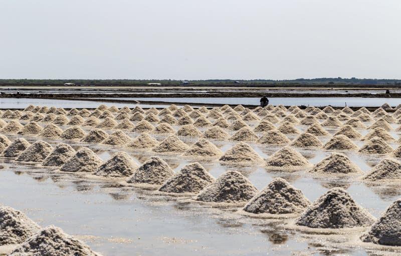 Rått salta eller högen av salt från havsvatten i avdunstning; damm på arkivfoto