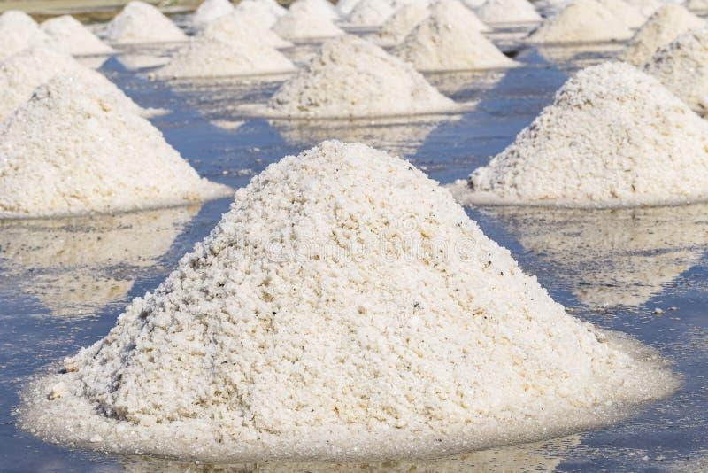 Rått salta eller högen av salt från havsvatten i avdunstning; damm på royaltyfri fotografi
