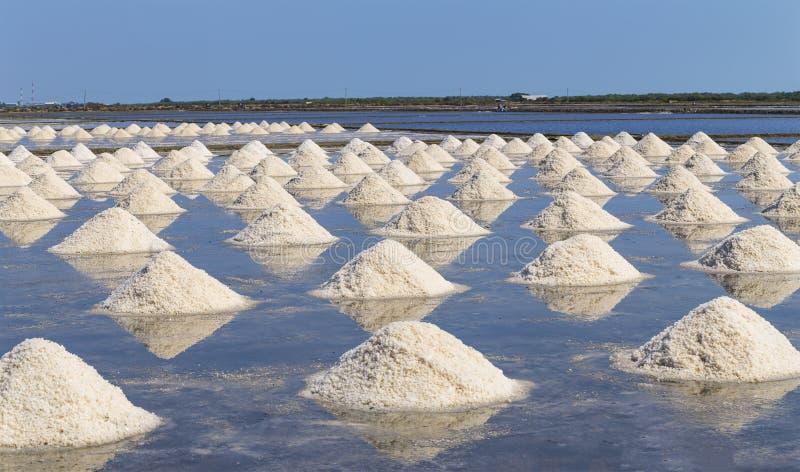 Rått salta eller högen av salt från havsvatten i avdunstning; damm på royaltyfri bild