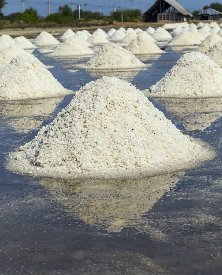 Rått salta eller högen av salt från havsvatten i avdunstning; damm på Phetchaburi, Thailand royaltyfria foton