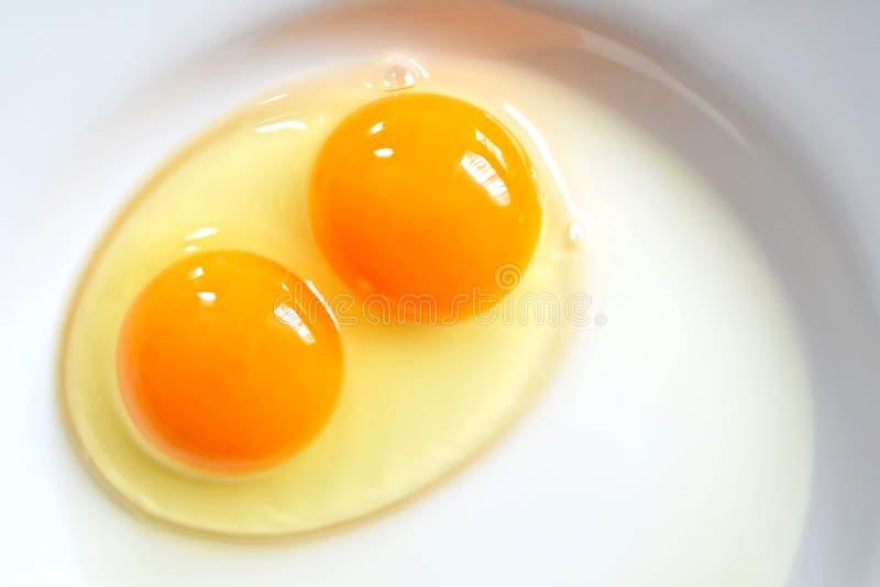 Rått två-äggula ägg på plattan royaltyfria foton