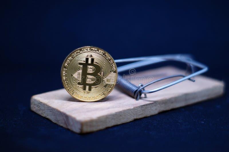 Råttfälla med guld- bitcoin på svart bakgrund royaltyfri foto