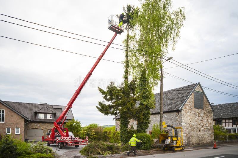 Règlage d'arbre image libre de droits