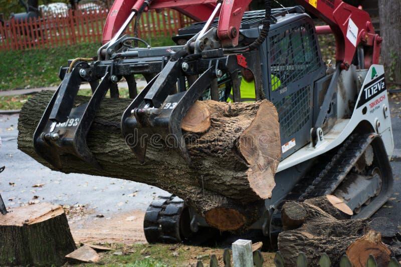 Règlage et retrait 2 d'arbre images stock