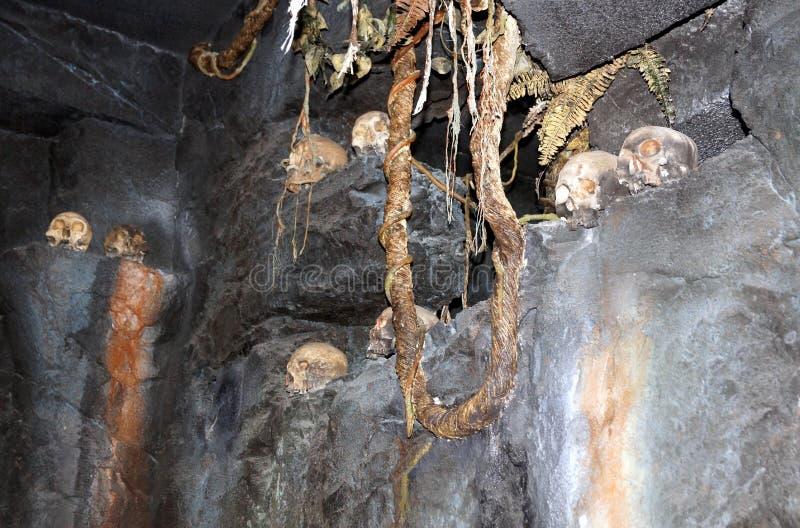 Règne de Skull Island de Kong image stock