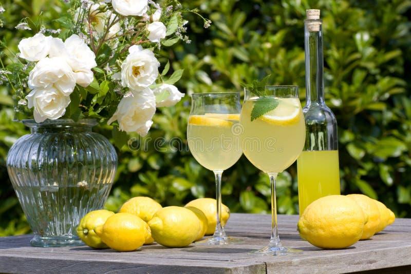 Réception de cocktail images libres de droits