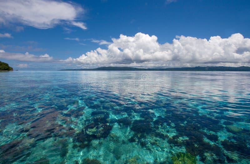 Récif coralien sous-marin image libre de droits