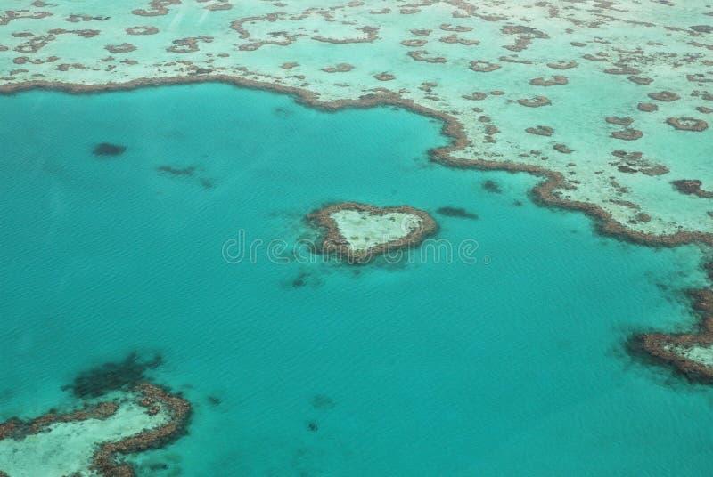 Récif De Barrière Grand Image libre de droits