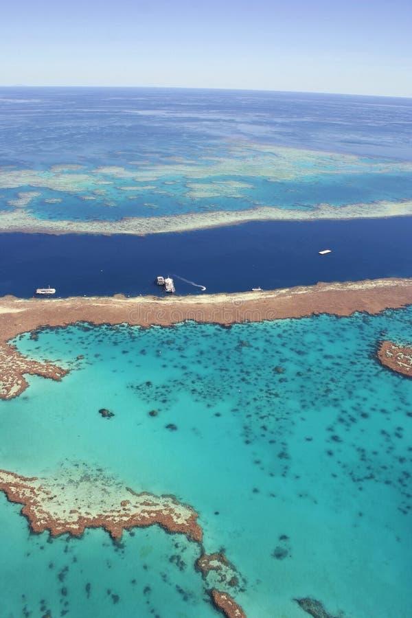 Récif de barrière grand, Queensland, Australie photographie stock libre de droits