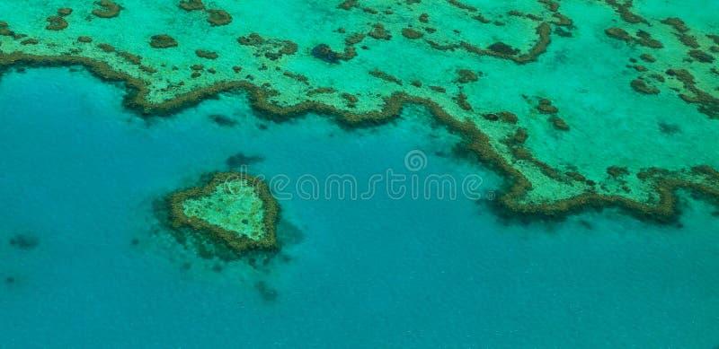Récif de coeur photo libre de droits