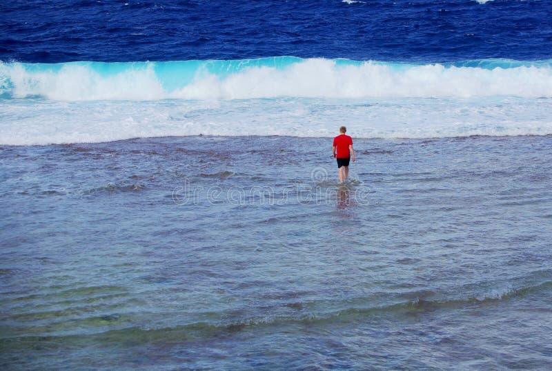 Récif marchant, Niué photographie stock libre de droits