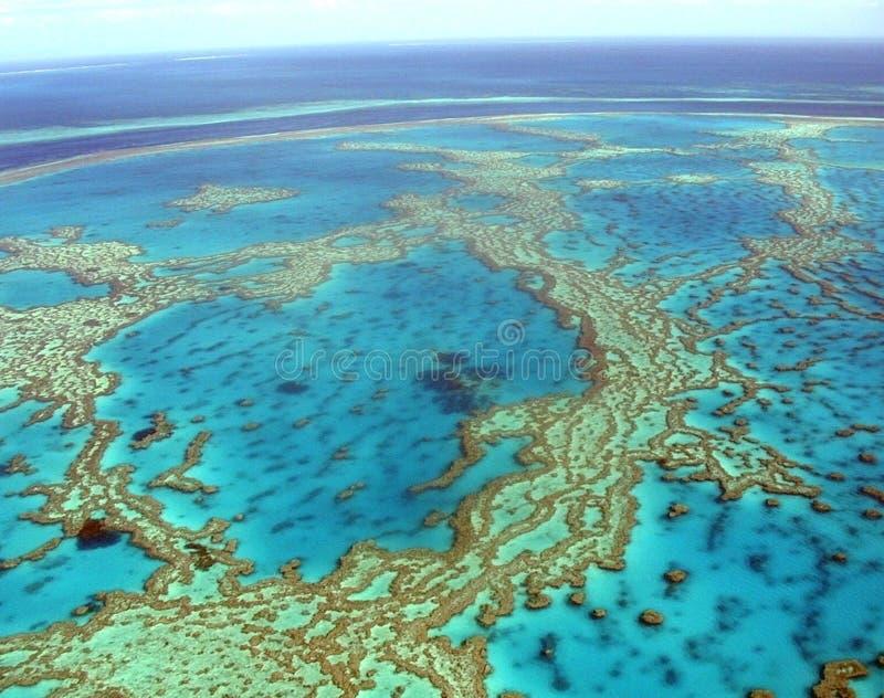 Récif tropical photos libres de droits