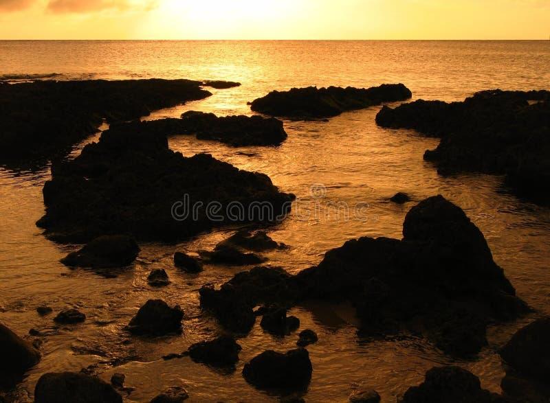 Récifs coraliens au temps de soirée photos libres de droits