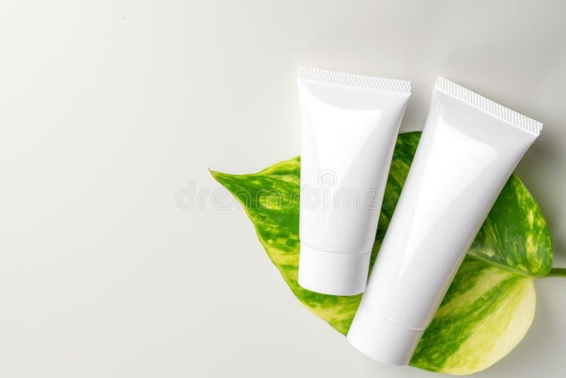 Récipients cosmétiques de bouteille avec les feuilles de fines herbes vertes, label vide photos stock