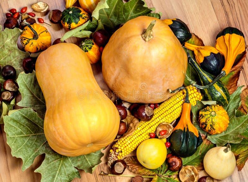 Récolte d'automne photographie stock