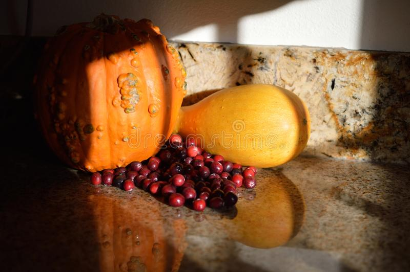 Récolte d'automne de courge de potiron de canneberges d'ombres d'après-midi image stock
