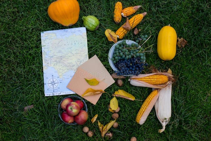Récolte d'automne sur l'herbe verte avec la carte et les ce dernier Légume d'automne sur l'herbe en composition Carte et légume B photographie stock libre de droits