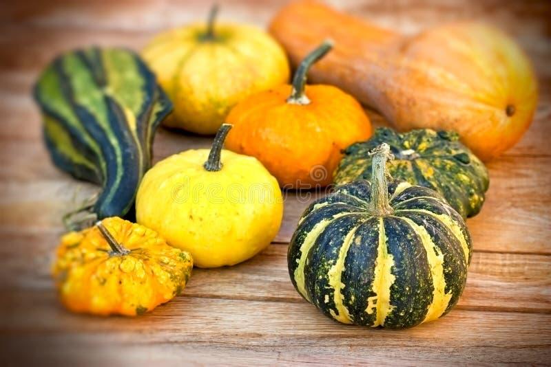 Récolte d'automne sur la table photographie stock libre de droits
