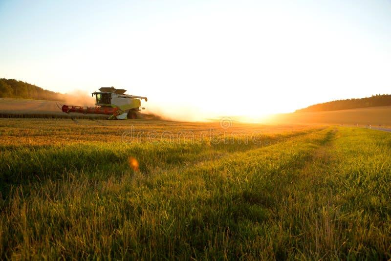 Récolte dans le coucher du soleil photographie stock