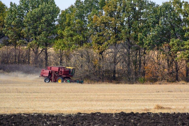 Récolte de cartel sur le champ Grain moissonnant le cartel image stock