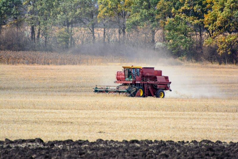 Récolte de cartel sur le champ Grain moissonnant le cartel images libres de droits
