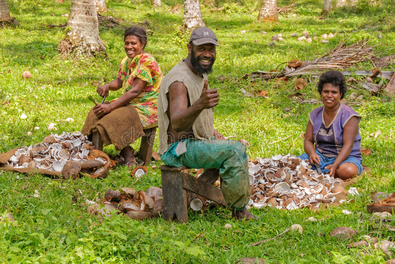 Récolte de coprah de noix de coco - Espiritu Santo photographie stock