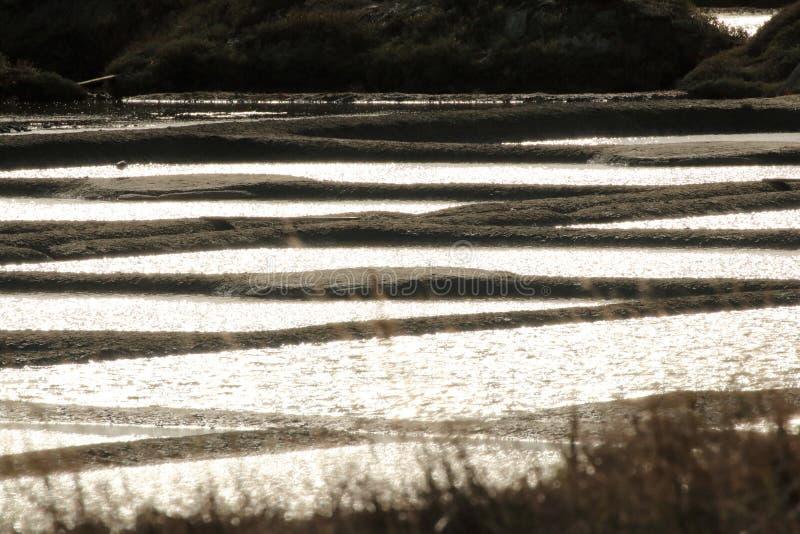 Récolte française de sel dans Guérande image stock