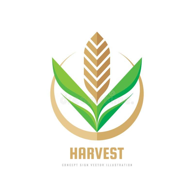 Récolte - illustration de vecteur de calibre de logo d'affaires de concept Signe créatif géométrique de blé Symbole abstrait d'ag illustration de vecteur