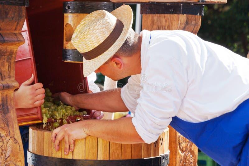 Récolte moravian traditionnelle de vin, jardins royaux, château de Prague, photos libres de droits