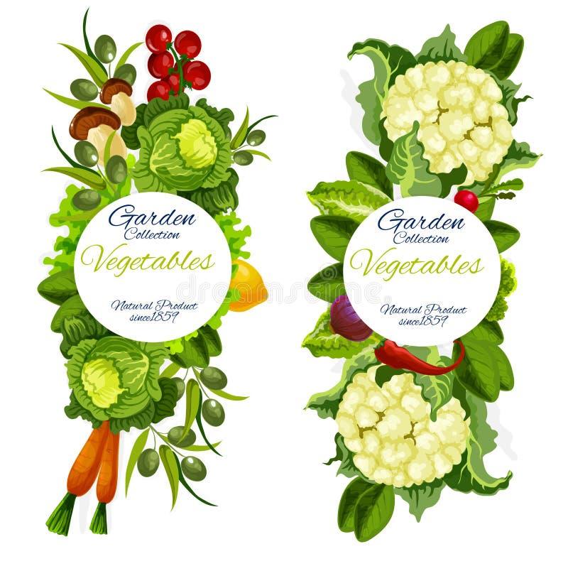 Récolte naturelle organique de ferme de vecteur de légumes illustration libre de droits