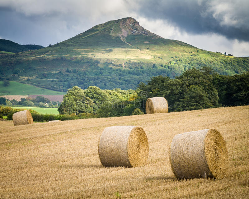 Récolte - North Yorkshire - le R-U image libre de droits